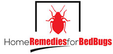 All About Treating and Getting Rid of Bed Bugs